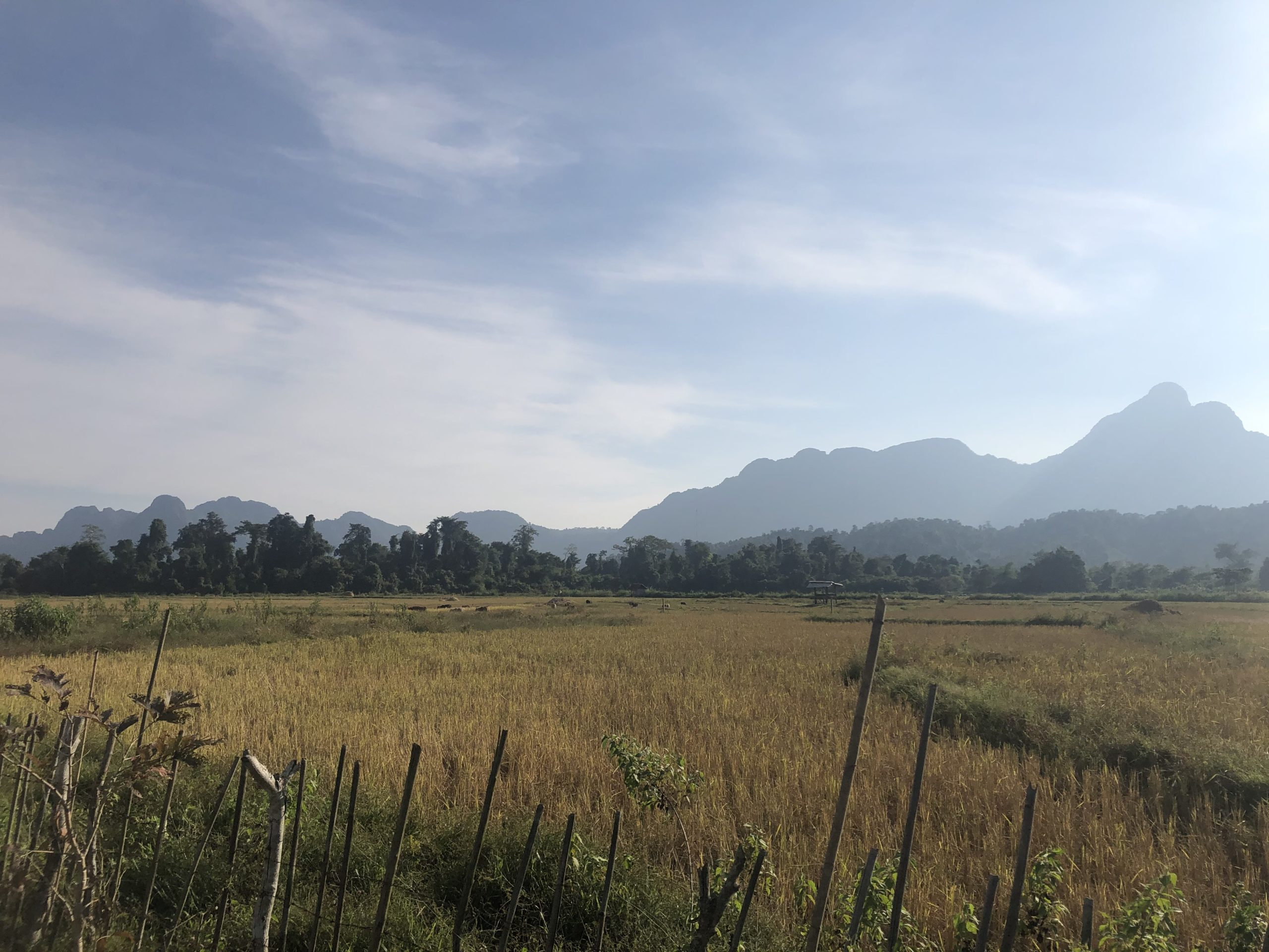 Picture of Laos rural landscapes