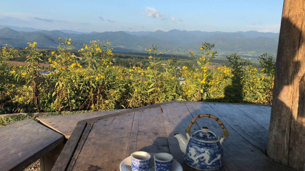 Overlooking Pai town with some lovely green tea